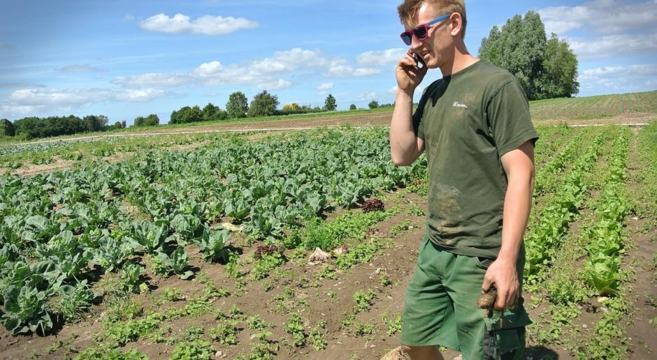 Niemcy: Rośnie zainteresowanie rolniczą produkcją ekologiczną