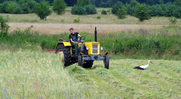Młody rolnik bez ziemi?