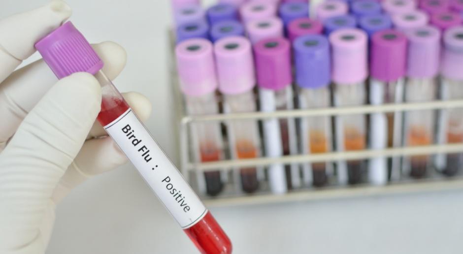 Dziewięć zgonów z powodu ptasiej grypy od początku stycznia w Chinach
