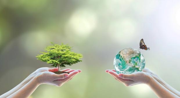 Podkarpackie: Dotacje i pożyczki na ochronę powietrza, wody i gleby