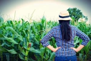 Raport: kobiety związane z rolnictwem są zadowolone z życia na wsi