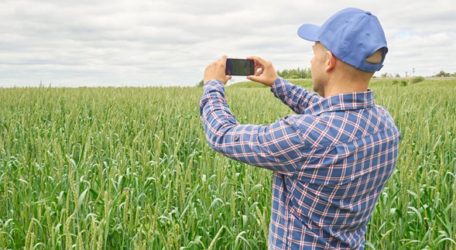 MRiRW: wnioski o oszacowanie strat suszowych - w aplikacji