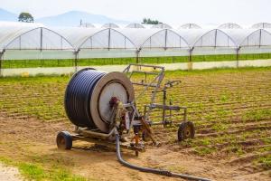 Rośnie popularność rolnictwa ekologicznego w Unii Europejskiej