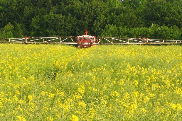 Łączne stosowanie agrochemikaliów w rzepaku – cały artykuł