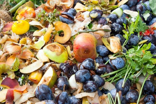 We Włoszech Krajowy Dzień Zapobiegania Marnowaniu Żywności