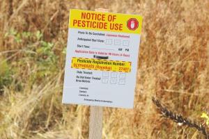 Kanada: największy w kraju pozew zbiorowy przeciw producentowi Roundupu