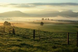 Niemcy: 1,7 mln hektarów ziemi należy do grup korporacyjnych