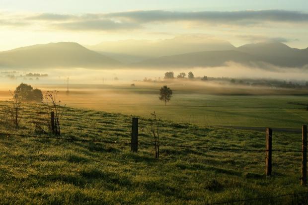 Problemy z handlem ziemią rolną okiem notariuszy