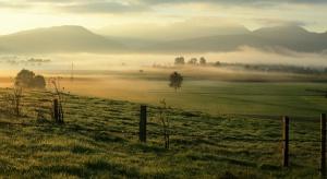 Sejm znowelizował ustawę o wstrzymaniu sprzedaży ziemi