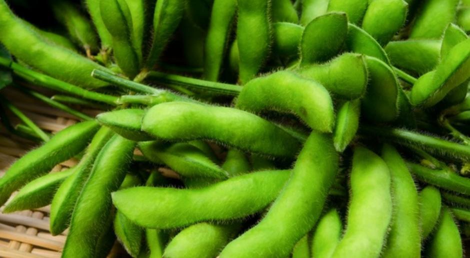 Ukraina zwiększy produkcję soi