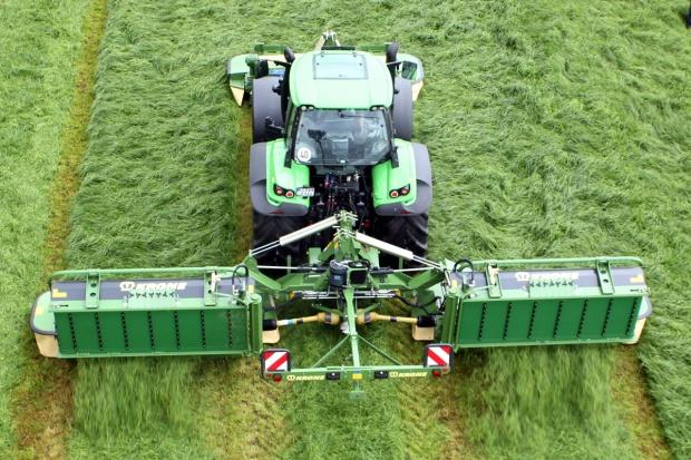 Zarejestrowano nowe odmiany traw pastewnych