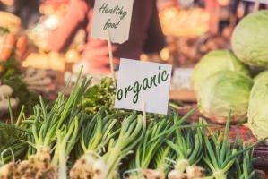 Niemcy: W resorcie ochrony środowiska tylko lokalna, ekologiczna zywność