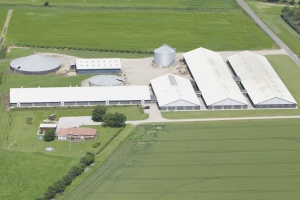 Jakie bariery stoją przed budową nowych ferm trzody?