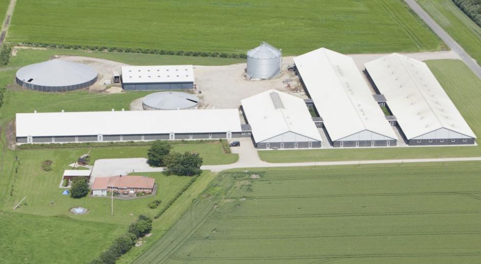 POLPIG przypomina: Od 31 października nowe wymogi bioasekuracji