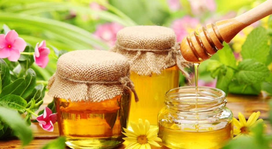 Ocieplenie klimatu to dłuższy sezon aktywności pszczół i więcej miodu