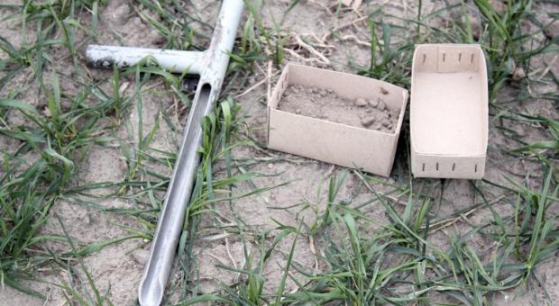 Sprawdź, ile azotu mineralnego jest w glebie