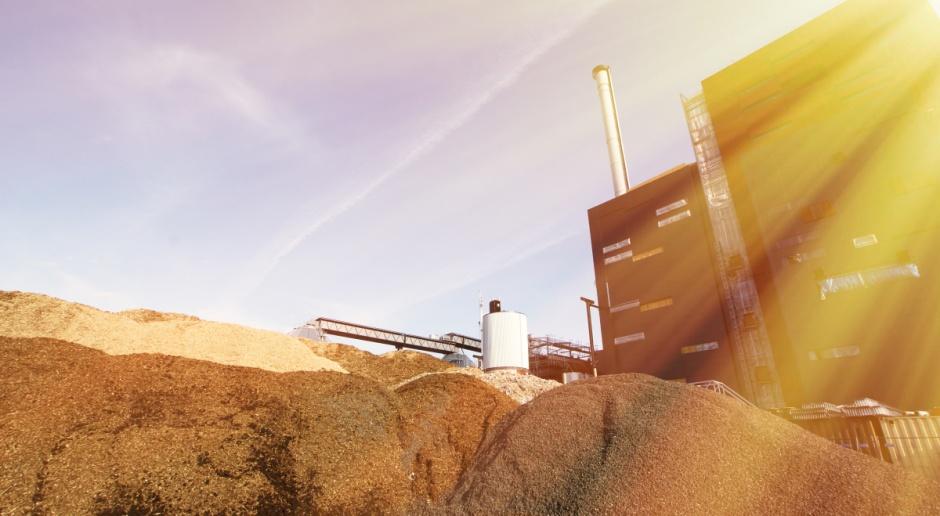 Szczecin: Dwóch podejrzanych ws. dostaw biomasy pozostanie w areszcie