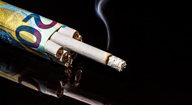Ile polskiego tytoniu w wyprodukowanym w Polsce papierosie?