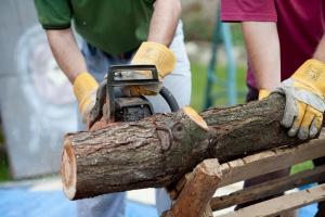 PiS ws. wycinki drzew: zakaz zbywania nieruchomości podmiotom gospodarczym przez 5 lat