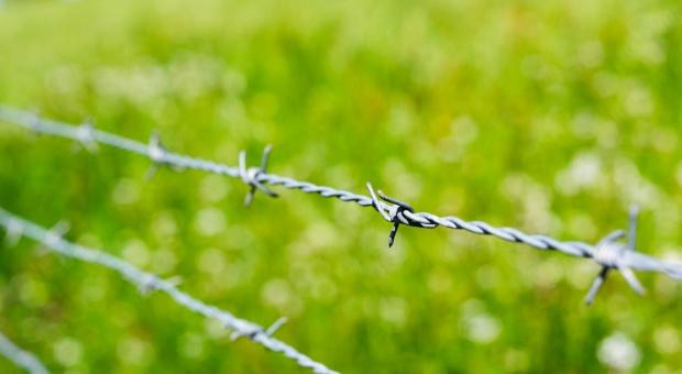 Polka pomaga imigrantom niewolniczo pracującym w gospodarstwach w Apulii