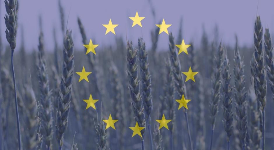 Unijna debata o zmianach w polityce rolnej; Polska chce wyrównania dopłat