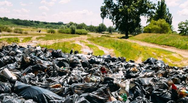 W lesie pod Nidzicą znaleziono pojemniki z odpadami