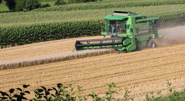 Rosja podwyższa szacunki zbiorów zbóż z 2016 r.