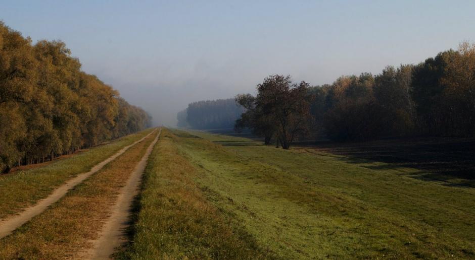 NIK: Leśnicy dobrze dbają o leśne drogi. Remonty współfinansował PROW