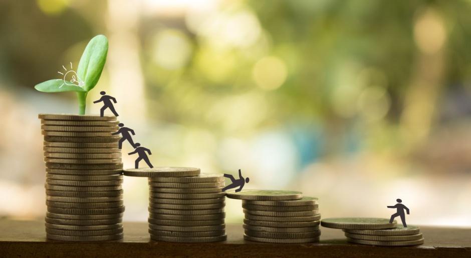 Dopłaty jako rekompensata kosztów produkcji?