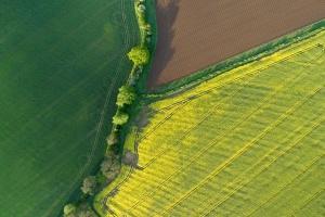 Fotonika w nowoczesnym rolnictwie i leśnictwie
