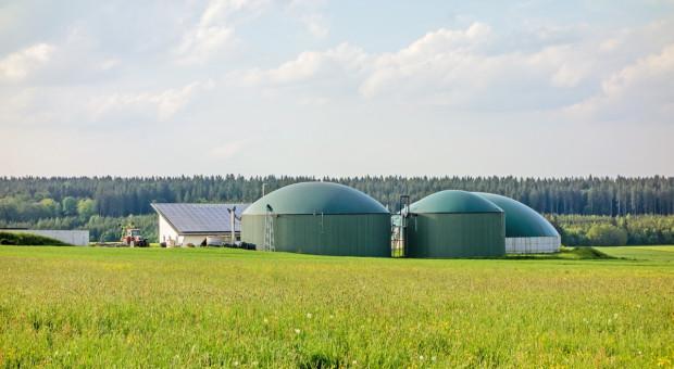 Wielki pożar biogazowni w Niemczech