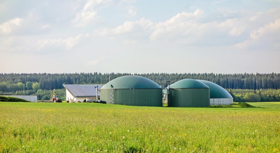 Pięć podmiotów wygrało aukcję OZE dla istniejących biogazowni rolniczych