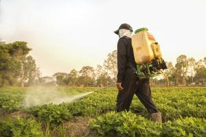 Unijna agencja: Herbicyd glifosat nie powoduje raka