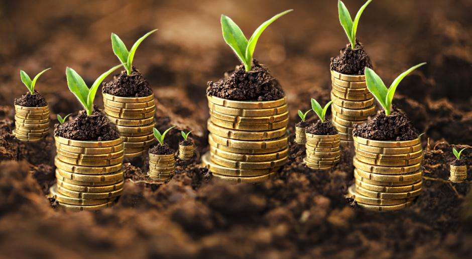 Raport: Rolnicy biorą coraz więcej pożyczek na zakup ziemi