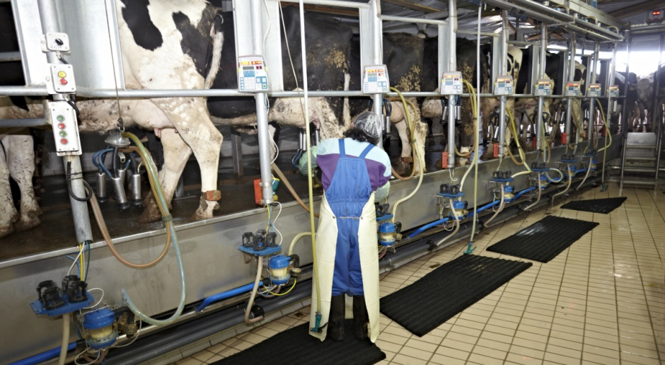 UE: Dostawy mleka do mleczarni na razie poniżej poziomu z 2016 r.