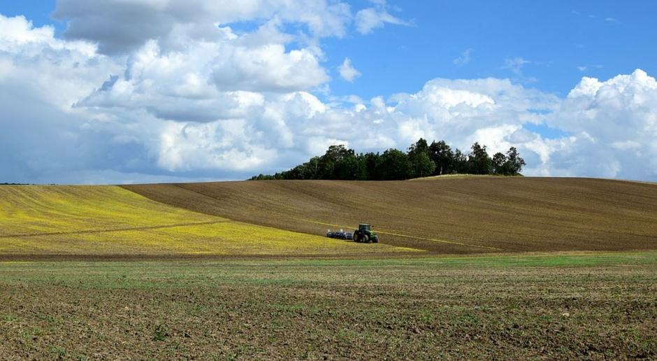 Izby rolnicze chcą dzielić ziemię ANR