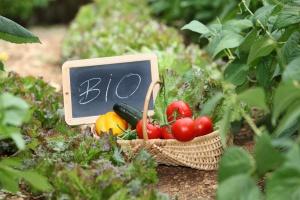 Szybko rośnie światowy rynek żywności ekologicznej