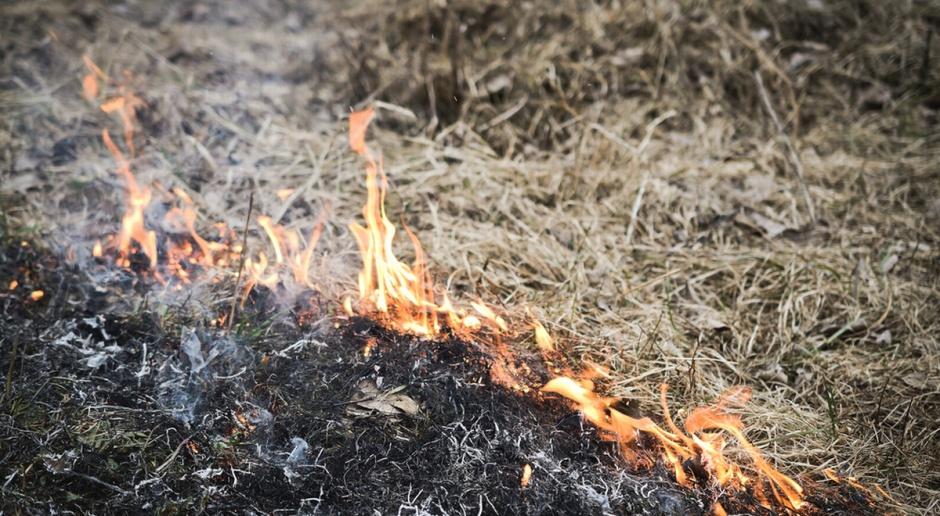 """Zainaugurowano ogólnopolską kampanię """"Stop pożarom traw"""""""