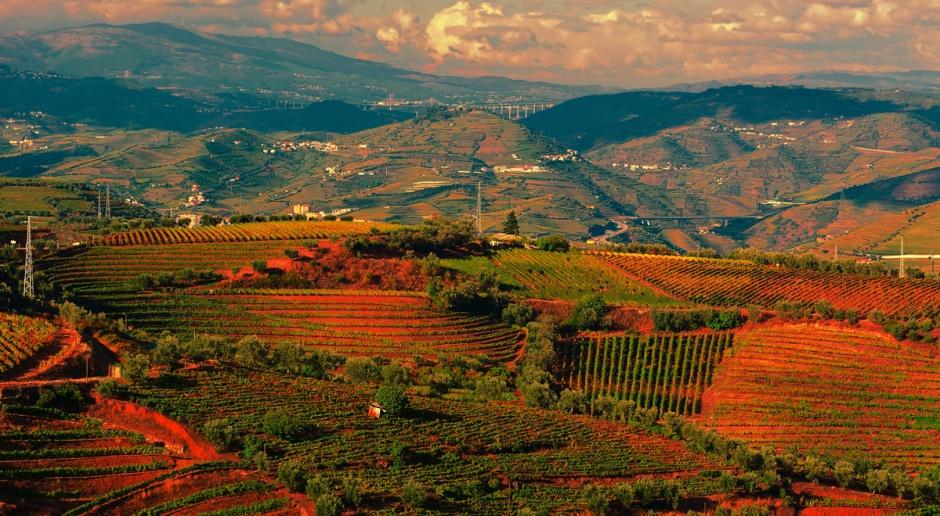 Portugalia: Rząd uruchomił bezpłatny rejestr budynków i gruntów rolnych