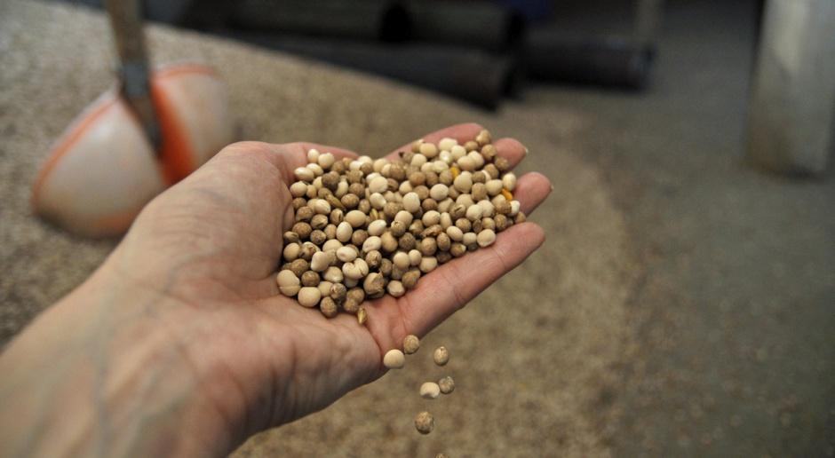Zadyszka na rynku zbóż i oleistych