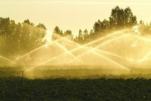MR: Jeśli nie przyjmiemy Prawa wodnego, KE może zawiesić refundację środków z tego obszaru
