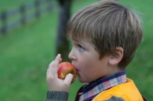 ARR: Dzieci jedzą więcej owoców i warzyw, ale nadal mniej niż powinny