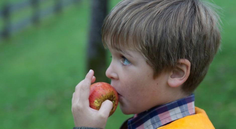 Biebrzański PN zachęca do uprawy tradycyjnych odmian drzew owocowych
