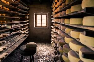 ARiMR: Przetwórcy żywności mogą składać wnioski o dotacje unijne