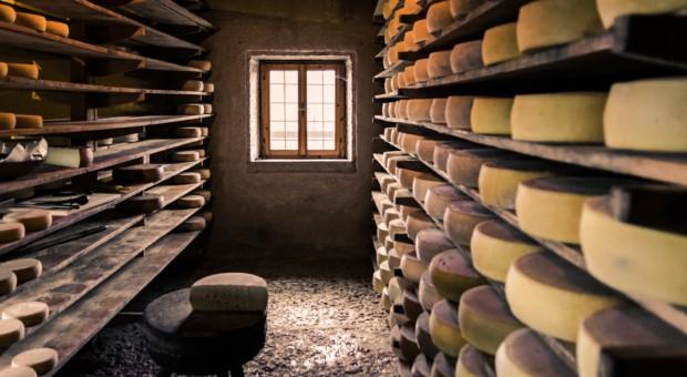 Kanada: Import sera z UE nadal niewielki mimo CETA