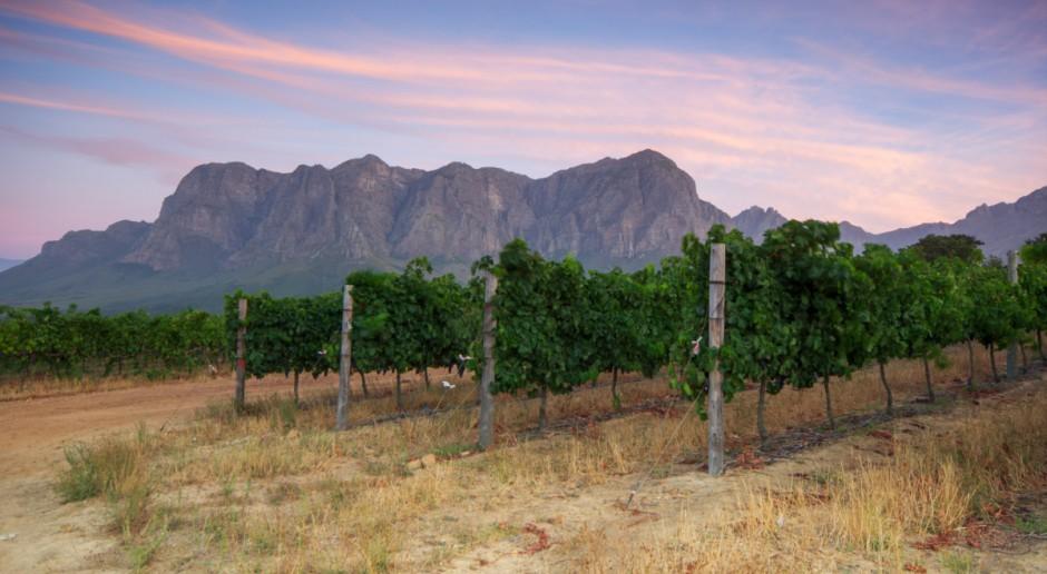 RPA: Czy prezydent Zuma odbierze białym farmerom ziemię?