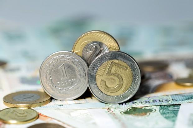 17 proc. rolników złożyło dotychczas wnioski o dopłaty bezpośrednie