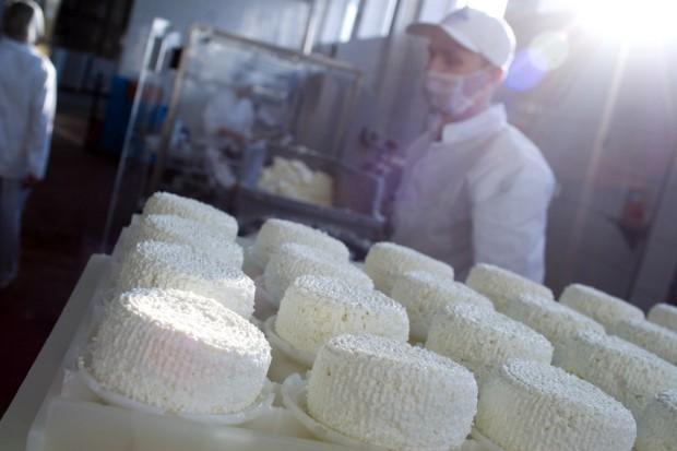 GDT: Ceny przetworów mlecznych na dobrym kursie