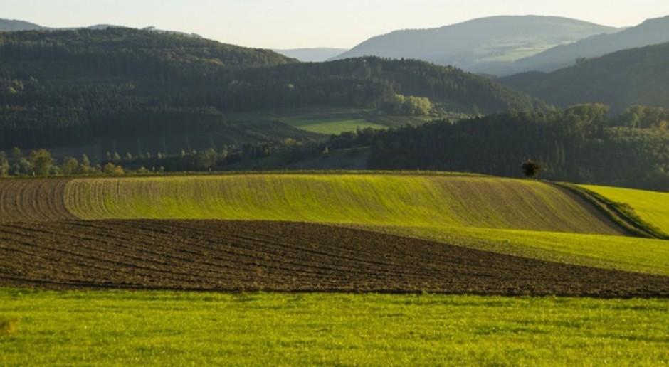 Francja: Zasiewy roślin uprawnych w 2017 r.