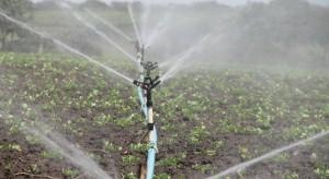 Inwestycje w nawadnianie można łączyć z innymi obszarami modernizacji gospodarstw